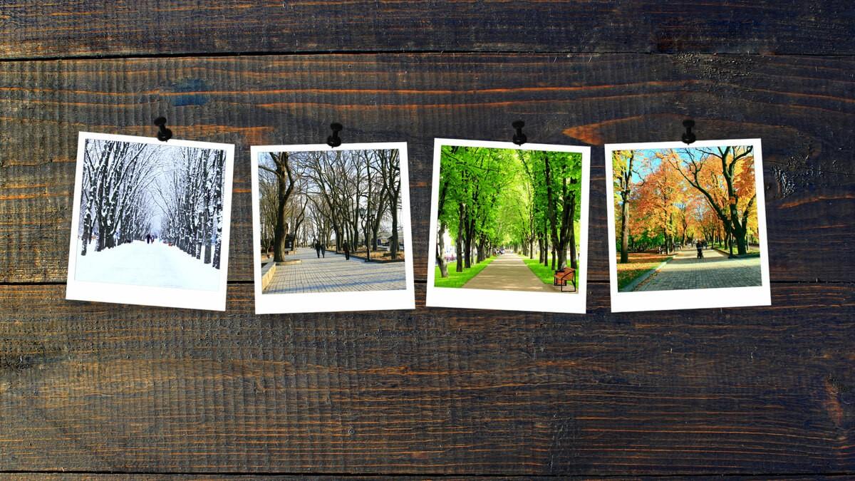 Quatro fotos de paisagens de estações do ano em inglês