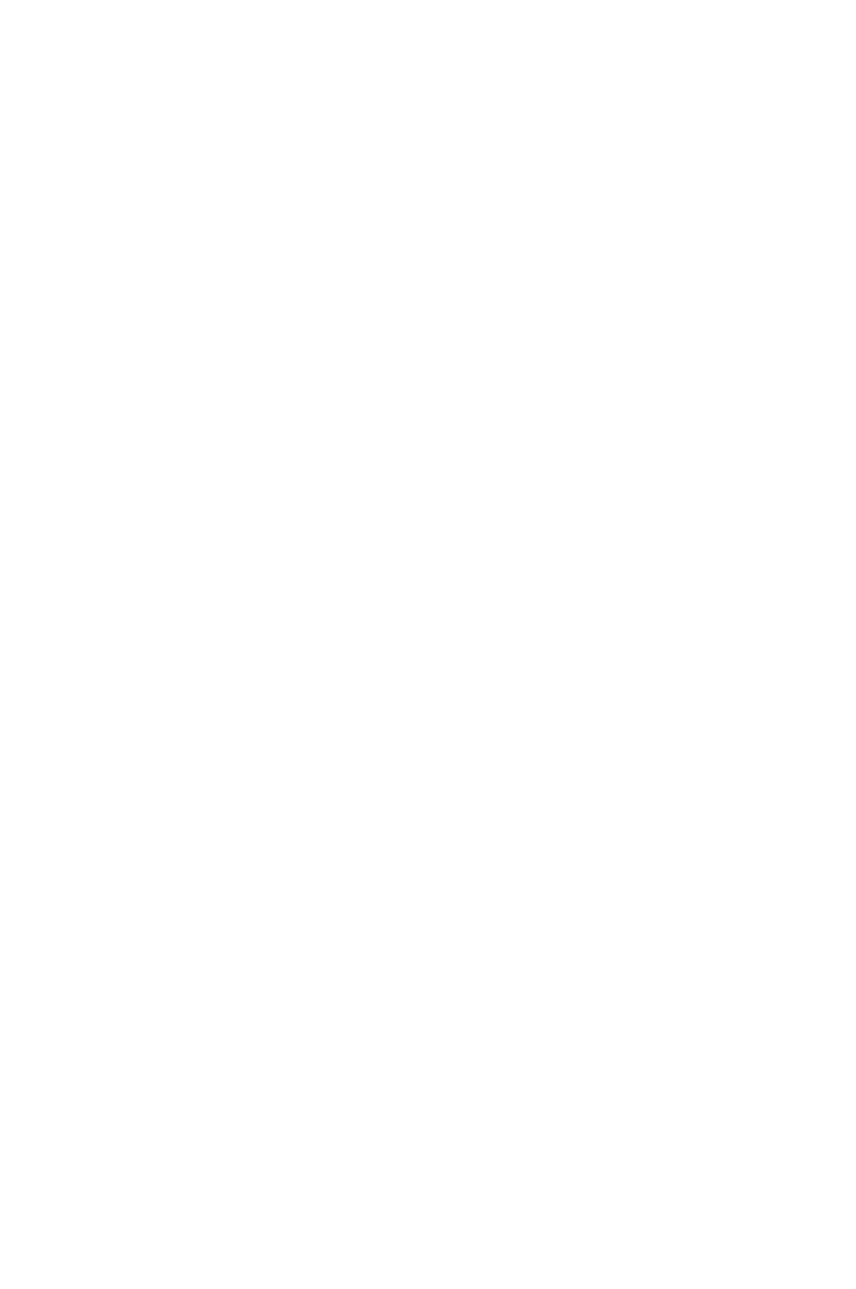 icone 10