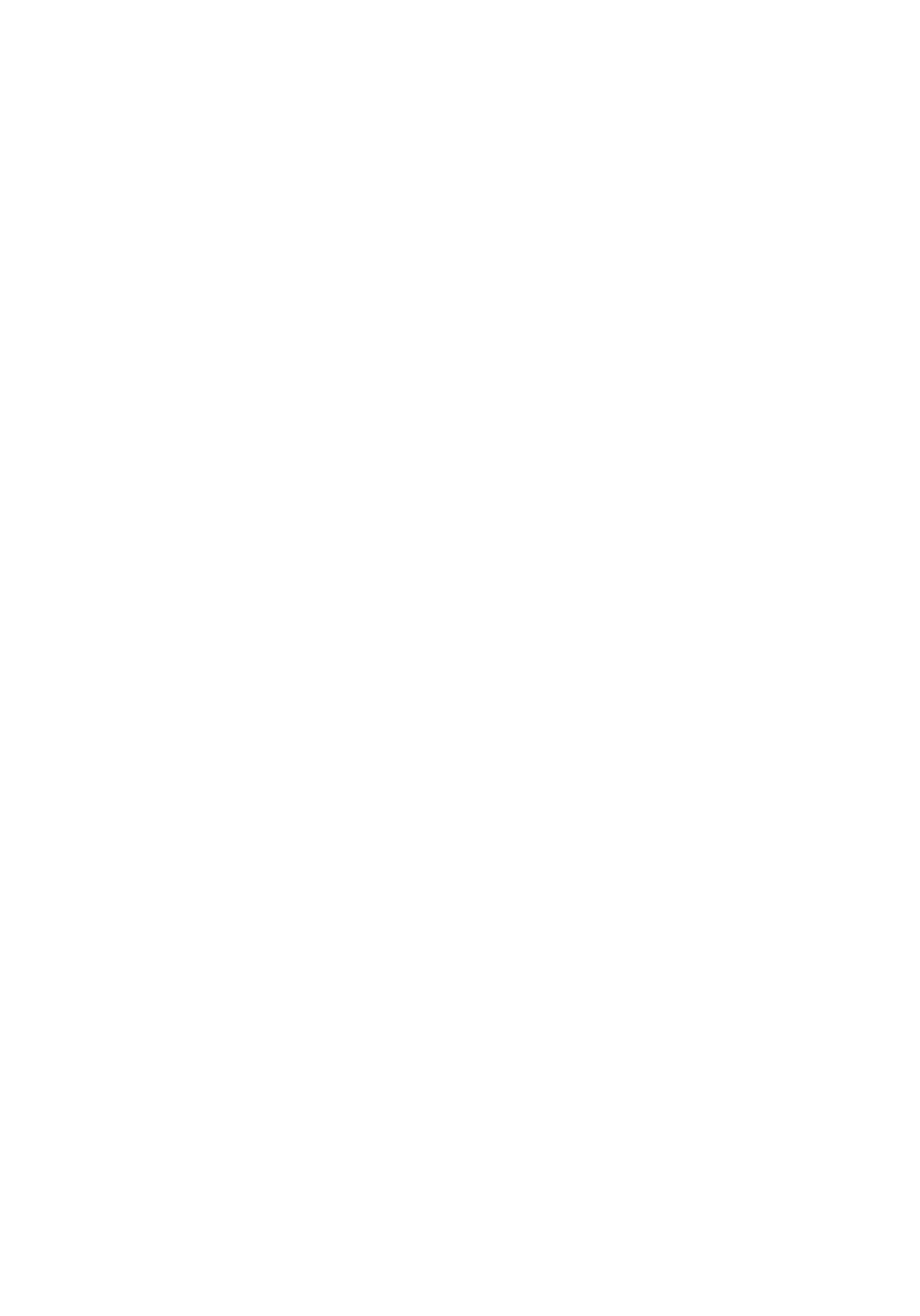 icone 13